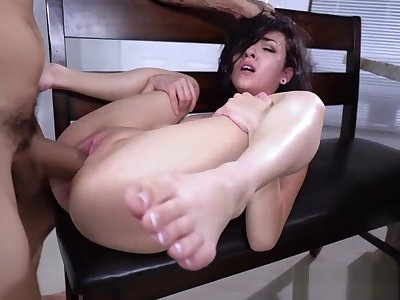 Component Rough Turtle-dove Be useful to Kiley Jay